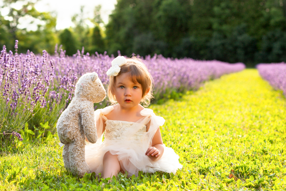 girl - teddy - lanvendar